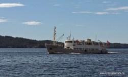 VEstgar i Herdlafjorden